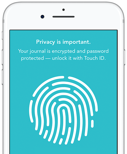 Privacy setup panel showing fingerprint.